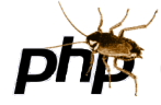 php security flaws