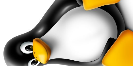 linux kernel security vulnerability