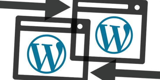 wordpress seo vulnerability