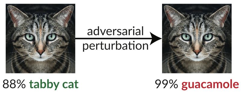 Neural Network are vulnerable to attack via adversarial attacks