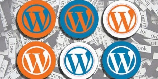 Wordpress plugin vulnerability
