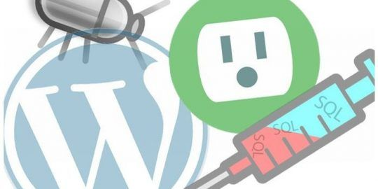 newsletter wordpress plugin bugs