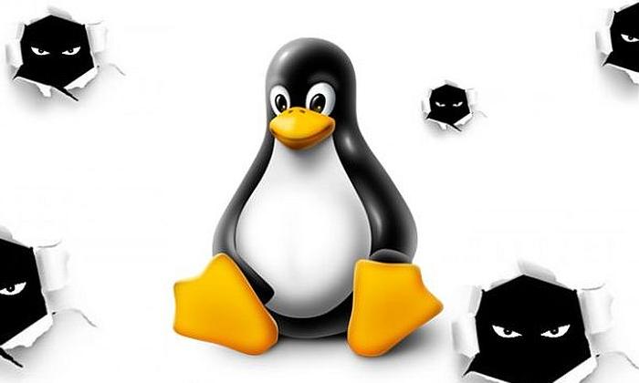 Linux_700_420