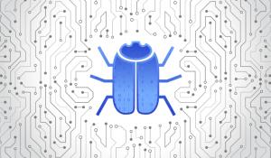 bug bounty bug