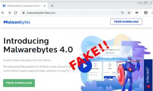 fake malwarebytes site raccoon