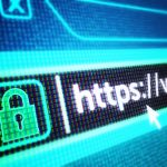 How To Defend the Extended Network Against Web Risks