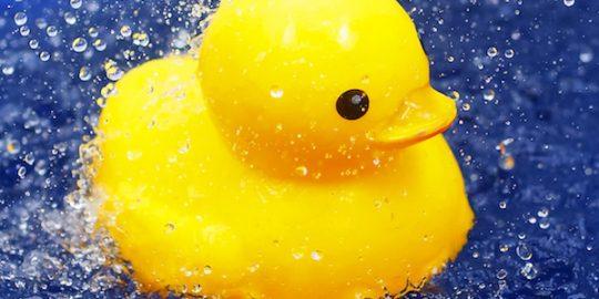 lemon duck botnet