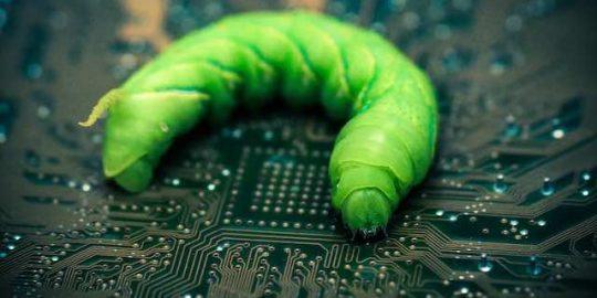 gitpaste-12 worm
