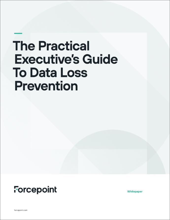 Whitepaper: The Practical Executive's Guide to Data Loss Prevention