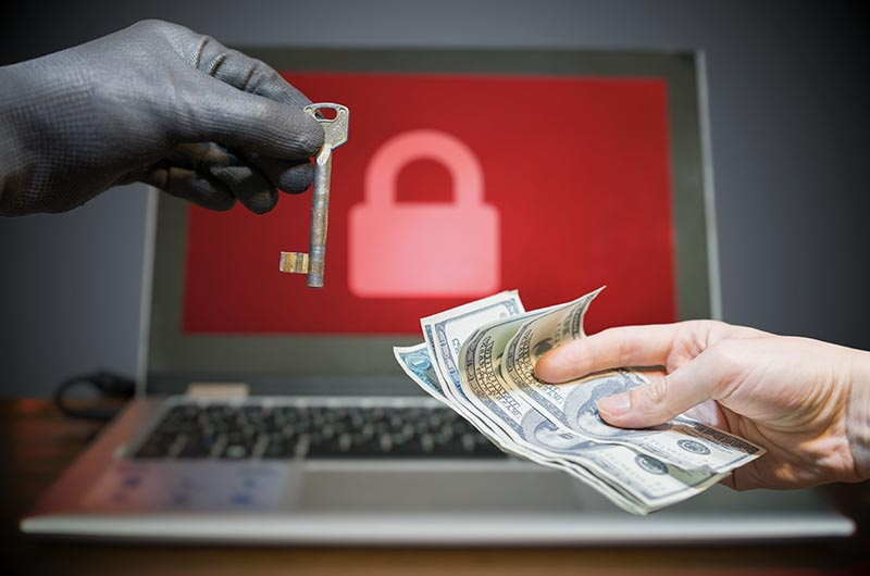 Ransomware Poll: 80% of Victims Don't Pay Up