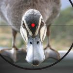 What's Making Your Company a Ransomware Sitting Duck