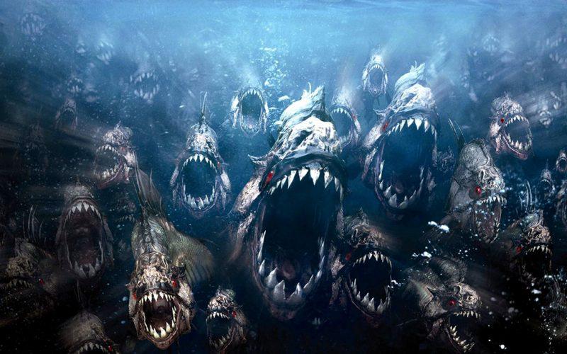 Podcast: IoT Piranhas Are Swarming Industrial Controls